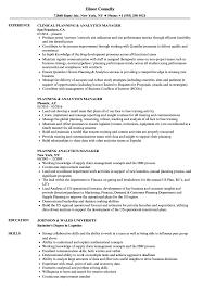 planning analytics manager resume samples velvet jobs