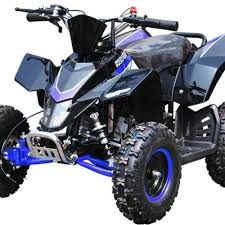 Blue 50cc Mini Moto Quad Bike Sx 49 Racing Style Pre Bikes 4 Fun