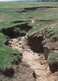 soil erosion essay etymology essay essay marijuana soil erosion essay