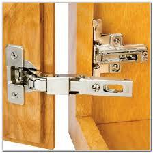 3 8 Inset Hidden Cabinet Hinges Cabinet Interior Design Ideas