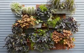 diy wall planters