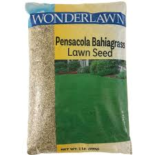 pensacola bahia grass seed