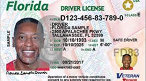 Nos Law From Disabled Excluded Florida Magazine Drivers Id Developmentally