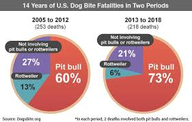 12 Year Us Dog Bite Fatality Chart 2018 U S Dog Bite Fatality Statistics Discussion Notes