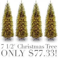 Buy The 65 Ft Prelit Kingswood Fir Pencil Artificial Christmas Kingswood Fir Pencil Christmas Tree