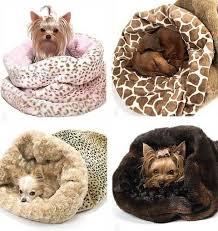small dog beds on sale.  Small Dog Beds Cat Air Filled Bed Heated Bed  Pets Trends 3 In Small Dog Beds On Sale R