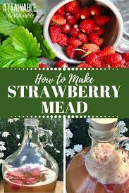 strawberry mead recipe how to make
