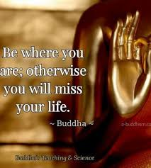 Buddha Quotes On Death And Life Fascinating Buddhist Quotes On Death Stunning Buddha Quotes About Life Death