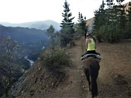 Image result for Horseback riding in Chile