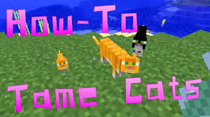 tame baby ocelot minecraft. Exellent Tame Minecraft Snapshots  HowTo Tame U0026 Breed Ocelots Cats In HD  YouTube Throughout Baby Ocelot F