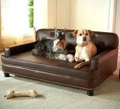 dog blankets for couch dog blankets for couches dog blanket for couch dog blanket couch dog
