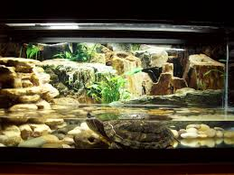 Turtle Tank Decor Turtle Tank Decorations Primitive Homestead December 2010 2017
