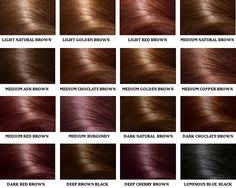Paul Mitchell Hair Colour Chart 28 Albums Of Paul Mitchell Red Brown Hair Color Explore