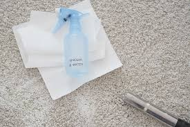 easy and effective homemade carpet cleaner for pet stains to remove any messes and odours