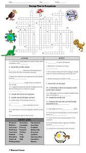 Energy Flow In Ecosystems Crossword Puzzle Energy Pyramid