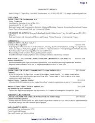 It Resume Template Download Download Now Cv Cover Letter Template