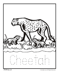 baby zoo animals coloring pages. Zoo Animal Coloring Pages Baby Cheetah In Animals