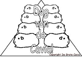 De Grote Cavia Website Kleurplaten