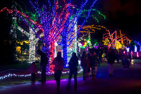 Best Christmas and Holiday Light Displays Around Seattle, Tacoma ...