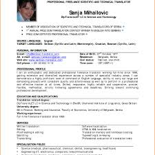 resume writing for it professionals resume format for experienced it professionals pdf freshers
