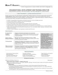 Good Looking Resumes Enchanting ☠ 48 Most Effective Resume Templates