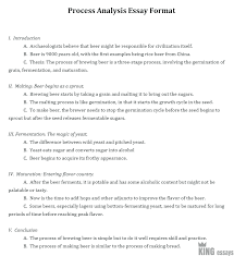 Example Of Process Essays Process Analysis Essay Examples With Step By Step Instructions