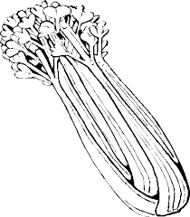 celery clipart black and white. In Celery Clipart Black And White WorldArtsMe