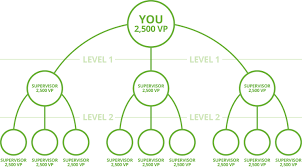 Herbalife Compensation Plan Facts About Herbalife