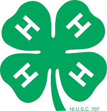 Image result for 4-H logo