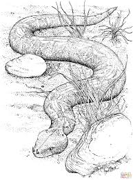 Small Picture Viper Snake coloring pages Free Coloring Pages