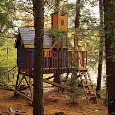 no tree treehouse