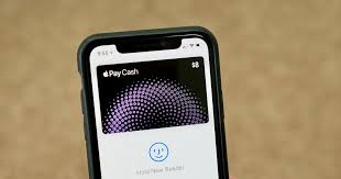 apple card vs apple pay vs apple cash