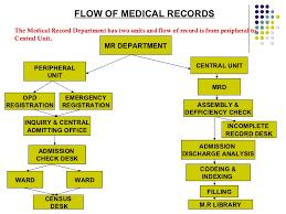 Organization Of Medical Record