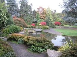 washington park arboretum seattle 2019 all you need to know before you go with photos tripadvisor