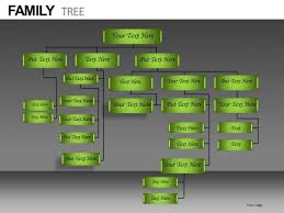 Powerpoint Hierarchy Templates Company Organization Hierarchy Diagram Powerpoint Templates
