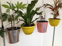 Metal Wall Plant Pot Holders For Apartment