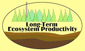 Updates on the Long Term Ecosystem Productivity Study @ OLympic Natural Resource Center (ONRC) | Forks | Washington | United States