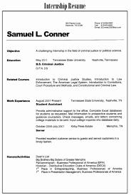 Resume Summary Examples Entry Level Elegant Students Statement