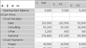 Cash Flow Projections Spreadsheet With Excel Spreadsheet Budget
