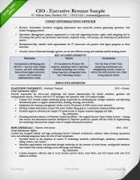 Cio Resume Format Cio Resume Sample Expert Resume Builder