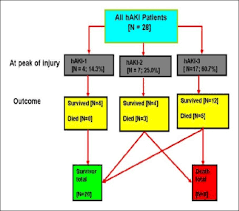 Hospital Acquired Acute Kidney Injury In Critically Ill