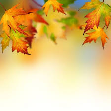 Free Fall Powerpoint Free Autumn Leaves Backgrounds For Powerpoint Flower Ppt Templates