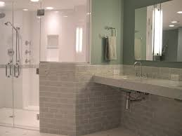 Accessible Bathroom Designs Simple Inspiration Design