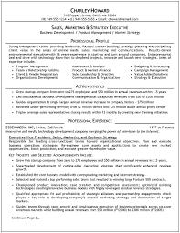 Executive Resume Examples Musiccityspiritsandcocktail Com