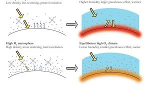 Variations In Atmospheric Oxygen Levels Shaped Earths