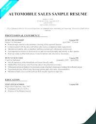 Sales Summary Resume Real Estate Agent Resume Summary Salesperson Sample Car Salesman