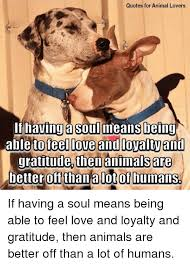Quotes For Animal Lovers Being To Teel Love And Loyalty An Then Custom Love Animal Quotes