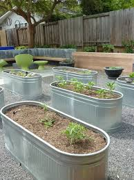 garden beds. galvanized trough raised garden bed beds a