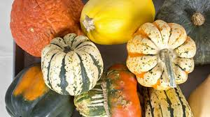 winter squash types nutrition facts how to prepare