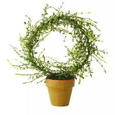Gardening Decorative Accessories 100 best Hallmark Garden Fairies images on Pinterest Fairies 54